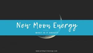 What about the New Moon energy